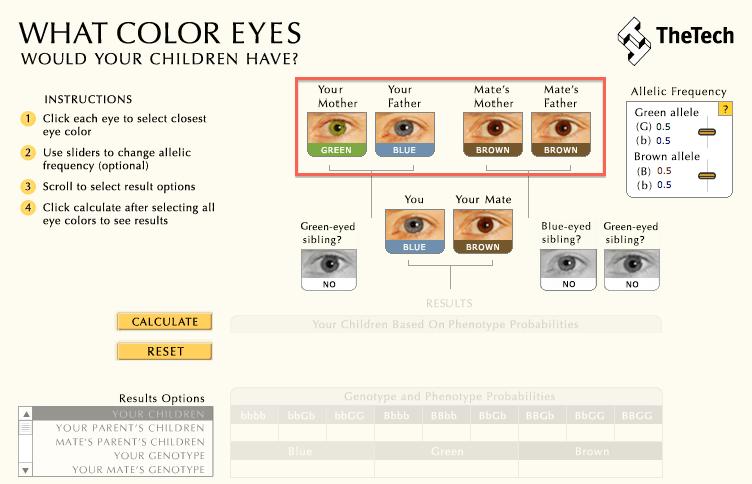 color-ojos-bebe-paso3